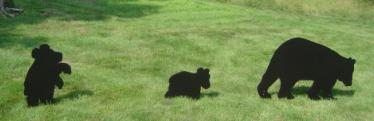 Yard Shadow: Bear Large, Standing Bear Cub, Walking Bear Cub